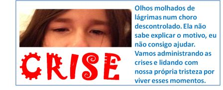 CRISEb