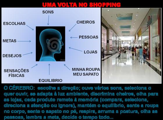 ISNoShopping